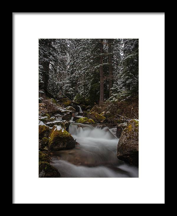 Stream Framed Print featuring the photograph Amongst The Trees And Stones by Mike Reid