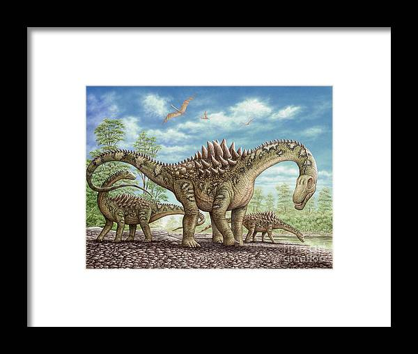 Animal Framed Print featuring the painting Ampelosaurus dinosaur by Phil Wilson