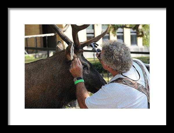 Deer Framed Print featuring the photograph An Artist by Leon Hollins III