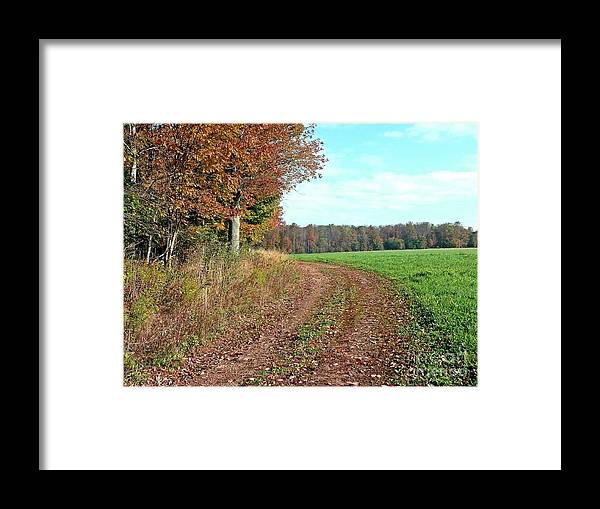 New York Framed Print featuring the photograph An Autumn Day by Christian Mattison