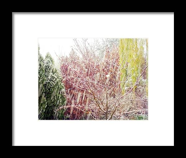 Snow Framed Print featuring the photograph An Early Snowfall by Alys Caviness-Gober