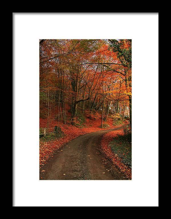Autumn Framed Print featuring the photograph An English Autumn by Sarah Broadmeadow-Thomas