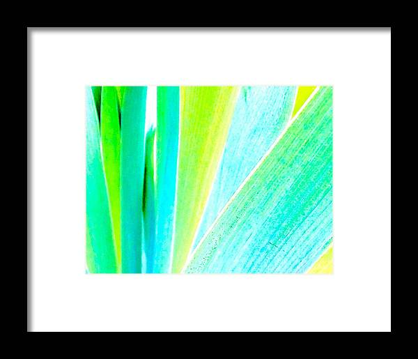 Abstact Framed Print featuring the photograph Analogous by Lori Bourgault