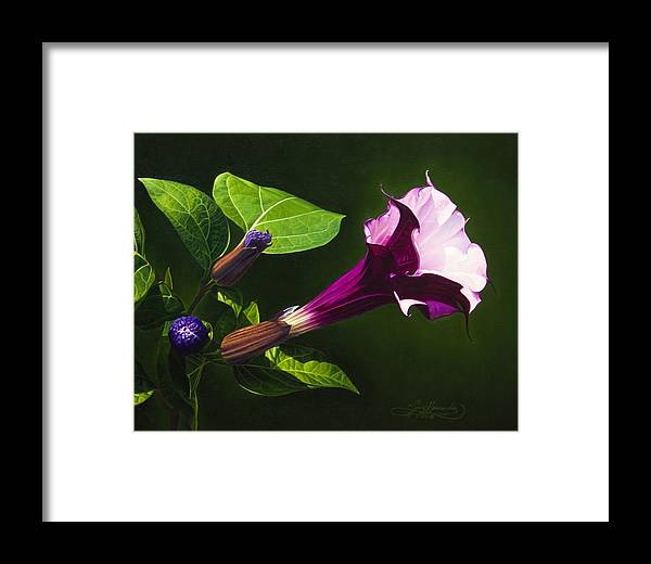 Floral Framed Print featuring the painting Anastacias Datura by Gary Hernandez