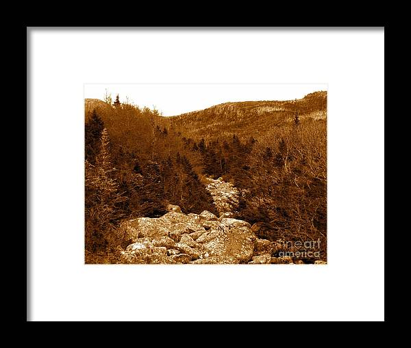 Ancient Brook Sepia Tones Framed Print featuring the photograph Ancient Brook - Sepia Tones by Barbara Griffin