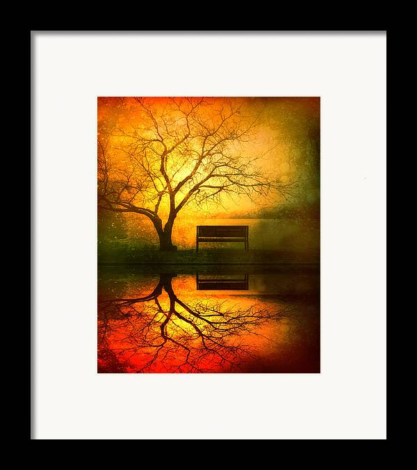 Bench Framed Print featuring the photograph And I Will Wait For You Until The Sun Goes Down by Tara Turner
