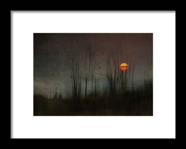 Mood Framed Print featuring the photograph ...and The Moon Stood Still For The Night Bird's Song... by Charlaine Gerber