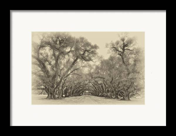 Oak Alley Plantation Framed Print featuring the photograph And Time Stood Still Sepia by Steve Harrington