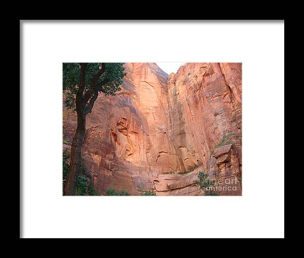 Big Bend Framed Print featuring the photograph Angels Landing From Valley by Ty Laffoon