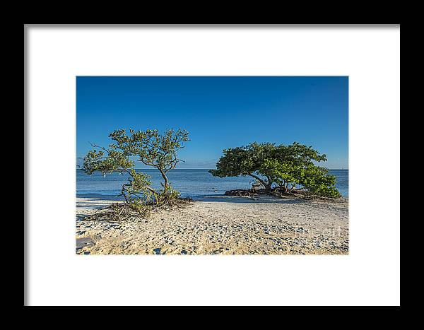 Ocean Framed Print featuring the photograph Annes Beach by Bruce Bain