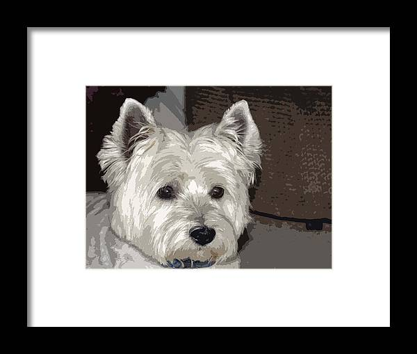 Westie Framed Print featuring the photograph Annie by Linda Dunn