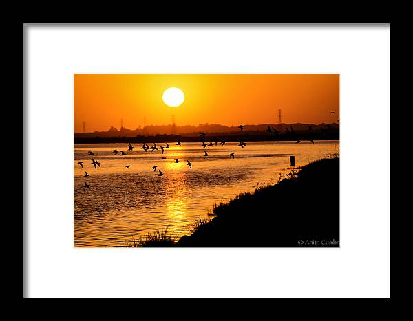 Sunset Framed Print featuring the photograph Anniversary Sunset by Anita Cumbra