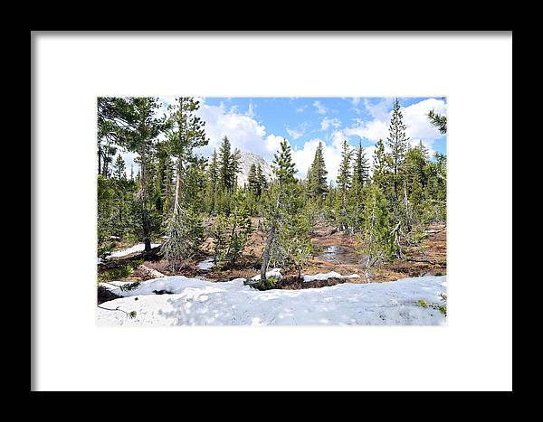 Yosemite Framed Print featuring the photograph Another Winter Passes In The Yosemite High Country by Scott Lenhart