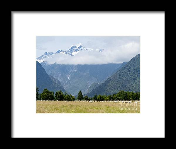 Mount Framed Print featuring the photograph Aoraki Mt Cook Highest Peak Of Southern Alps Nz by Stephan Pietzko