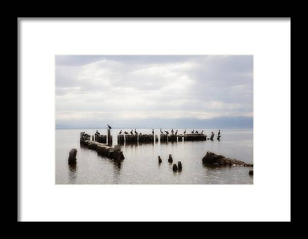Saltn Sea Framed Print featuring the photograph Apostles Of The Salton Sea by Hugh Smith