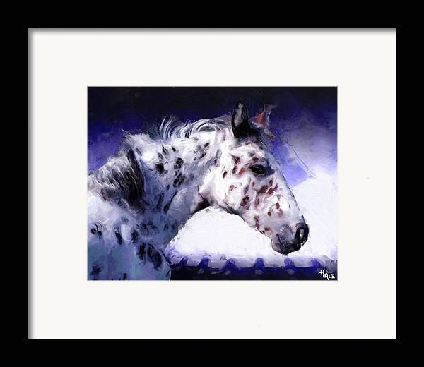 Southwest Framed Print featuring the painting Appaloosa Pony by Roger D Hale