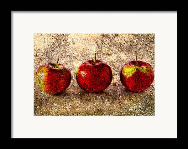 Apple Framed Print featuring the photograph Apple by Bob Orsillo