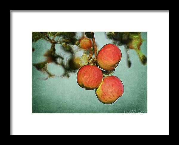 Fruit Framed Print featuring the digital art Apples by David Simons