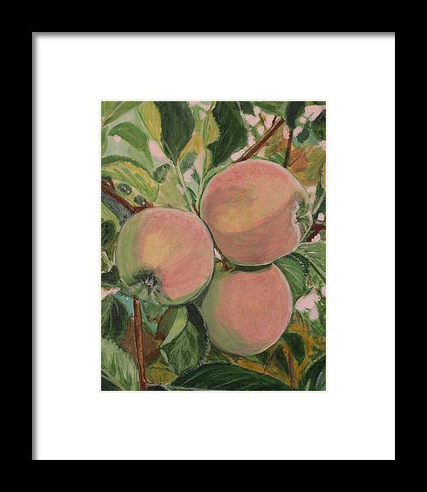 Apple Framed Print featuring the painting Apples by Vera Lysenko
