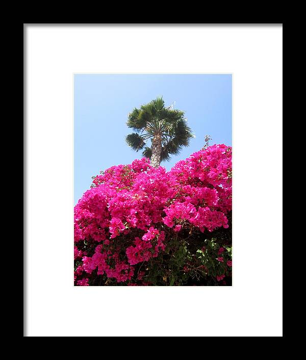 Flowers Framed Print featuring the photograph April Flowers 2013 by Dan Twyman