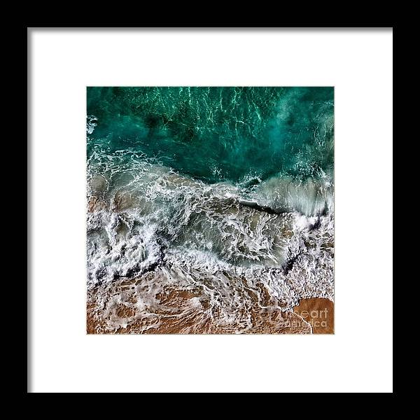 Framed Print featuring the photograph Aquatic by Jacques ISMAEL