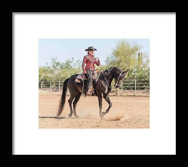 Horse Framed Print featuring the photograph Arabian Horse With Rider Dressed For by Lokibaho