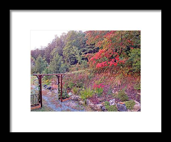 Duane Mccullough Framed Print featuring the photograph Arbor And Fall Colors by Duane McCullough