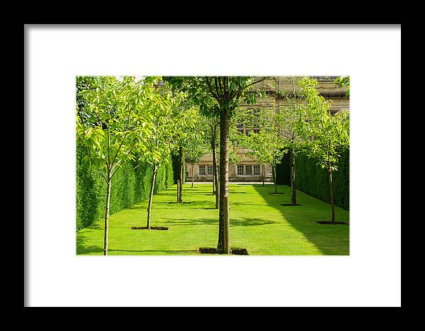 Garden Framed Print featuring the photograph Arboretum by Mair Hunt