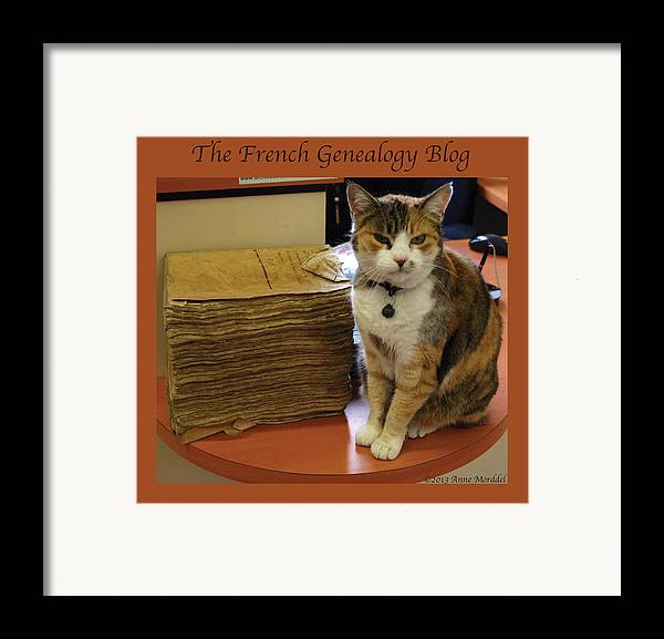 Cats Framed Print featuring the photograph Archives Cat With Fgb Border by A Morddel
