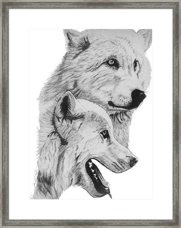 "ART HAND DRAWN WOLF IN CHARCOAL 8""X10"" PRINTS"