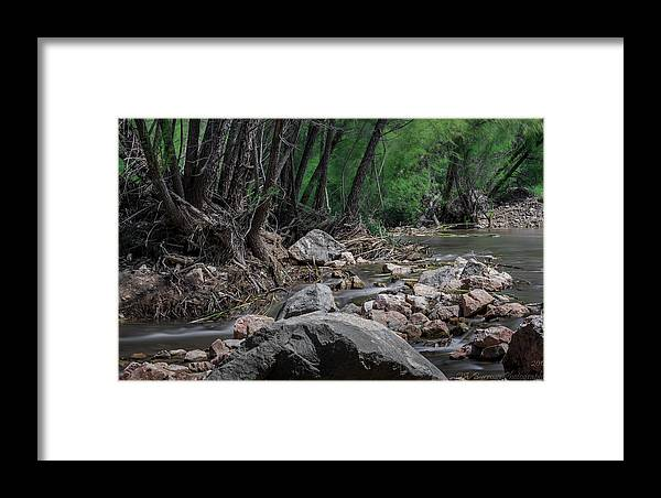 Verde River Framed Print featuring the photograph Arizona Riparian Flows by Aaron Burrows