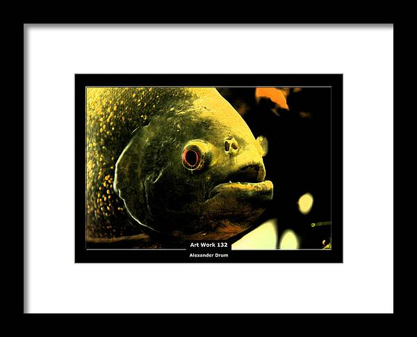 Piranha Framed Print featuring the photograph Art Work 132 Piranha by Alexander Drum