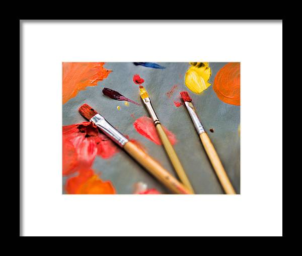 Artist Framed Print featuring the photograph Artist's Palette by David Kay