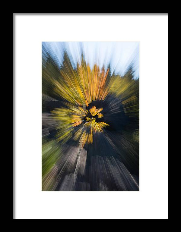 2012 Framed Print featuring the photograph Aspen Explosion by Josh Baker