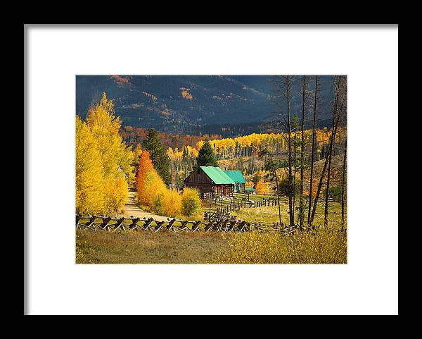Aspens Framed Print featuring the photograph Aspens 2 2014 by Jim Painter