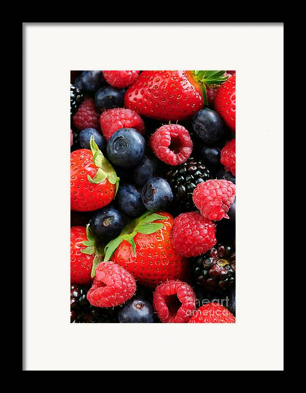 Berry Framed Print featuring the photograph Assorted Fresh Berries by Elena Elisseeva