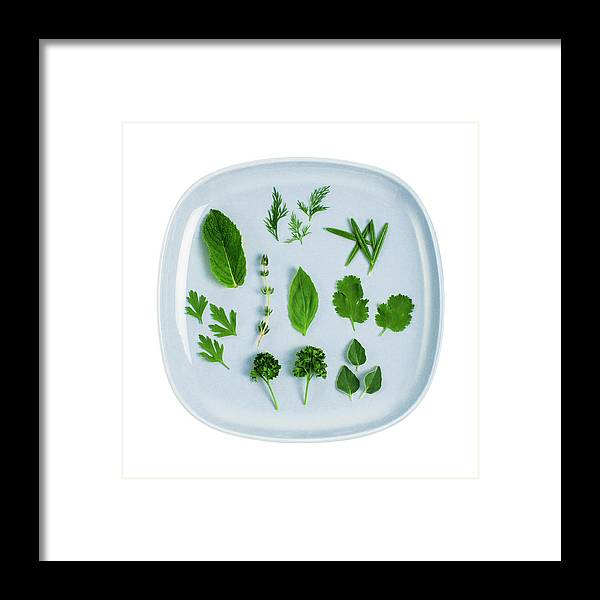 White Background Framed Print featuring the photograph Assorted Fresh Herb Leaves On Blue Plate by Creative Crop