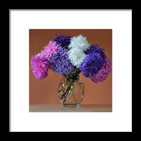 Asters Framed Print featuring the photograph Astonishing Asters. by Terence Davis