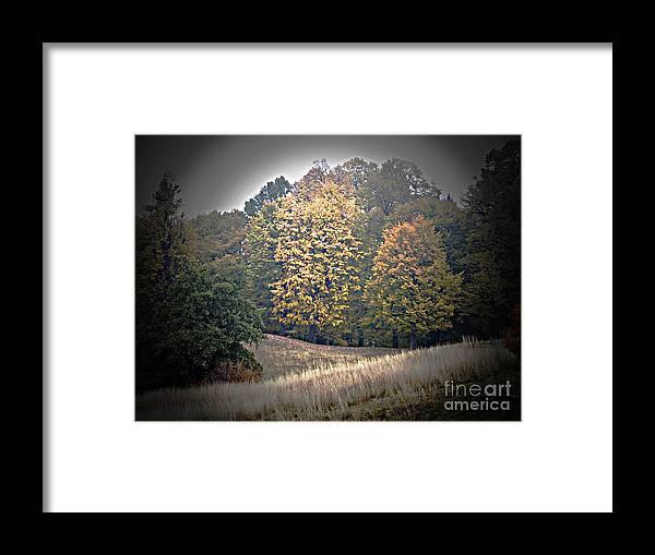 Autumn Framed Print featuring the photograph Autumn by Amalia Suruceanu
