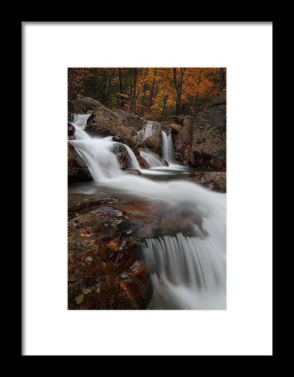 Autumn Framed Print featuring the photograph Autumn At Glen Ellis Falls by Jetson Nguyen