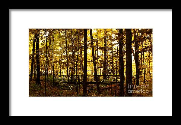 Autumnal Framed Print featuring the photograph Autumn Bridge I by Valerie Fuqua