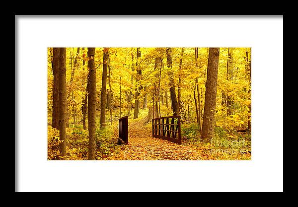 Autumnal Framed Print featuring the photograph Autumn Bridge II by Valerie Fuqua