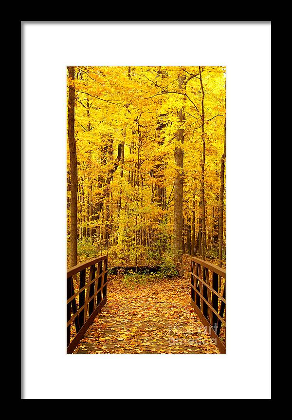 Autumn Framed Print featuring the photograph Autumn Bridge V by Valerie Fuqua