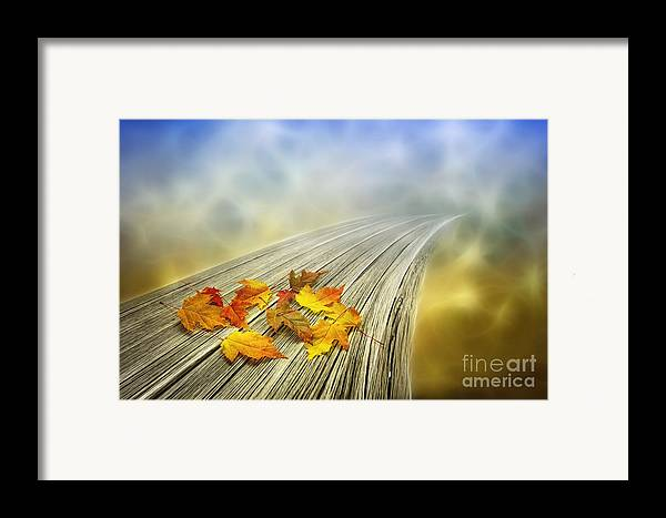 Art Framed Print featuring the photograph Autumn Bridge by Veikko Suikkanen