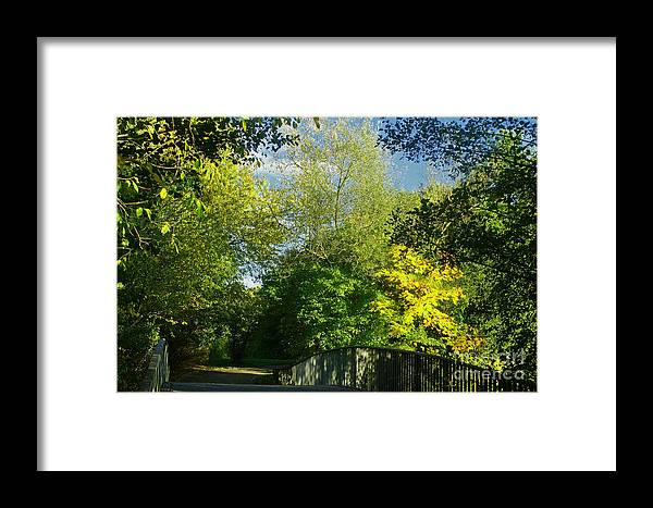 Nature Framed Print featuring the photograph Autumn Colors 4 by Rudi Prott
