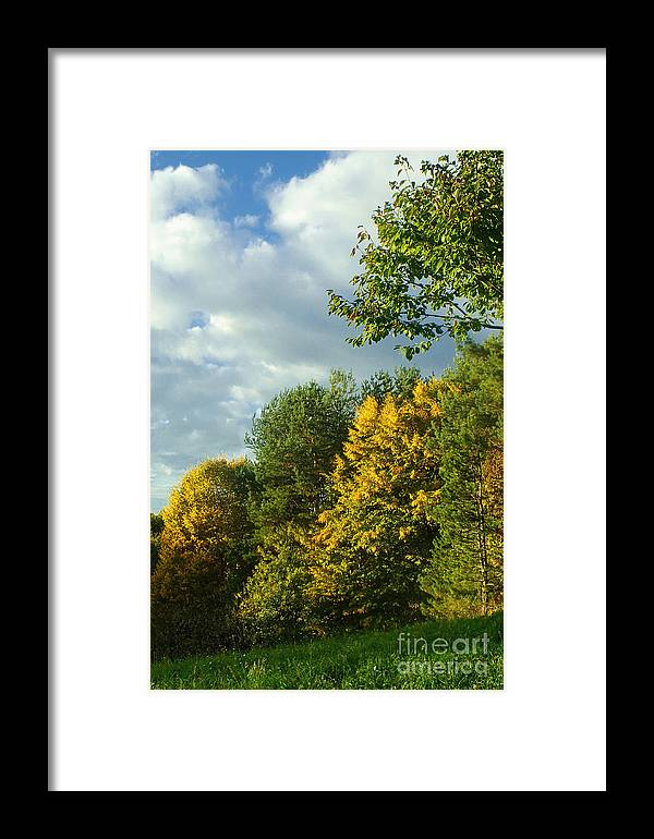 Nature Framed Print featuring the photograph Autumn Colors 6 by Rudi Prott