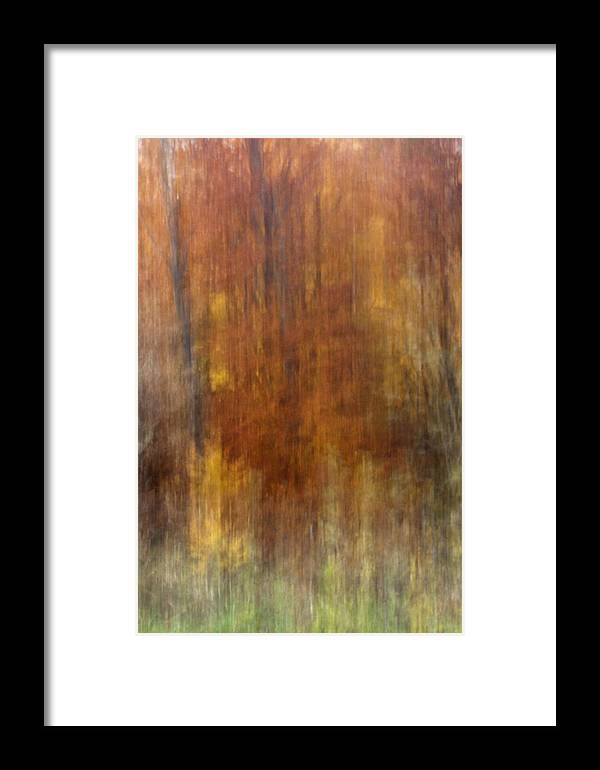Fall Framed Print featuring the photograph Autumn Colors by Daniel Csoka