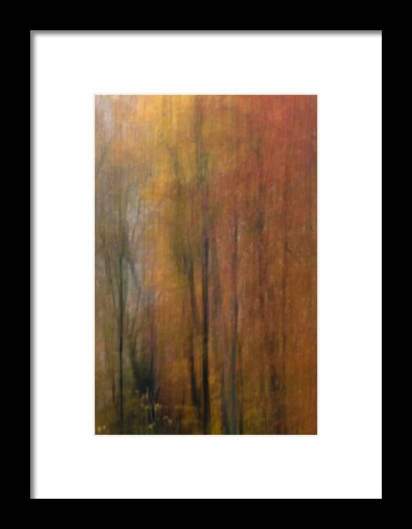 Fall Framed Print featuring the photograph Autumn Colors IIi by Daniel Csoka