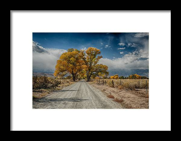 Fall Framed Print featuring the photograph Autumn Country Road by Cat Connor