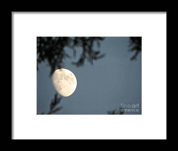 Moon Framed Print featuring the photograph Autumn Evenings by Leslie Hunziker